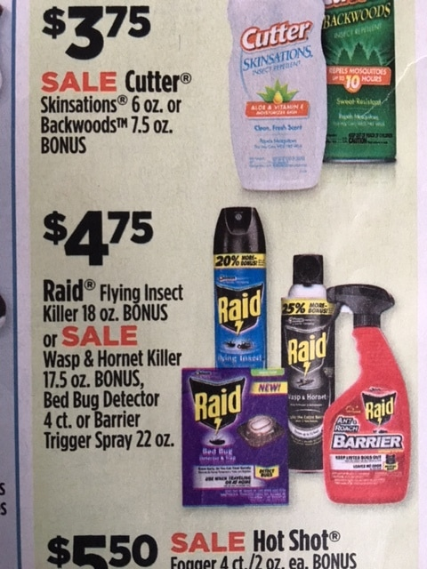 Dollar General Raid Bug Spray Including Wasp And Hornet 4 20 After New Printable Coupon